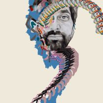 Animal Collective, Geologist, Brian DeGraw
